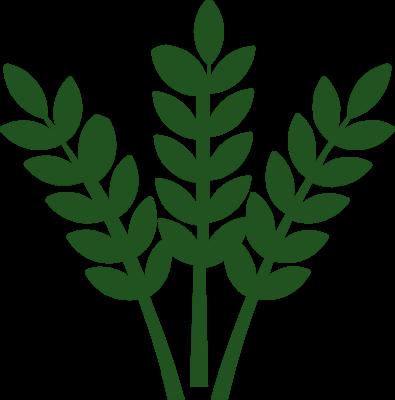 карусельная лого