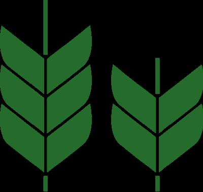 ленточные лого