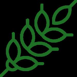 инфракрасная лого